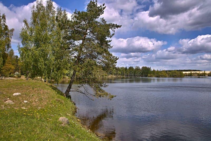 Lettland-Daugava stockbilder