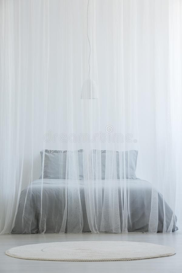 Letto della zanzariera con lettiera grigia che sta nel interi della stanza bianca immagine stock libera da diritti