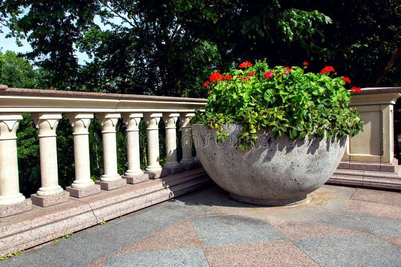 Letto di fiore concreto di emisfero con le fioriture rosse immagine stock libera da diritti