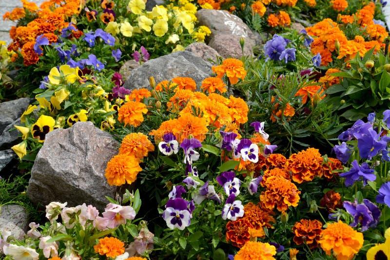 Letto di fiore decorativo con le pietre landscaping immagine stock libera da diritti