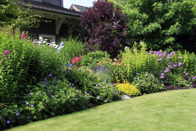 Letto di fiore del giardino fotografie stock libere da diritti