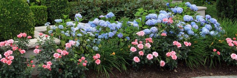 Letto di fiore di estate fotografia stock libera da diritti