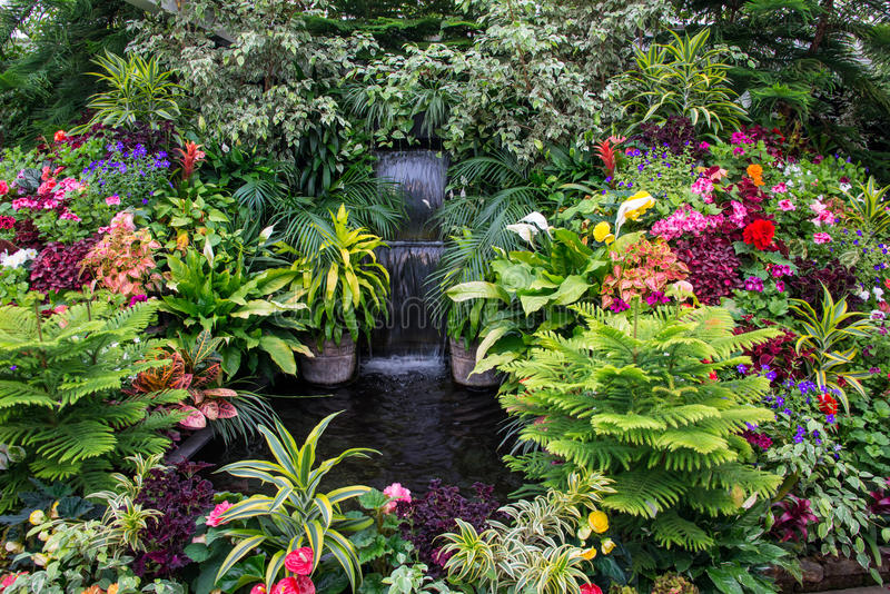 Letto di fiore, giardini di Butchart, Victoria, Canada fotografia stock