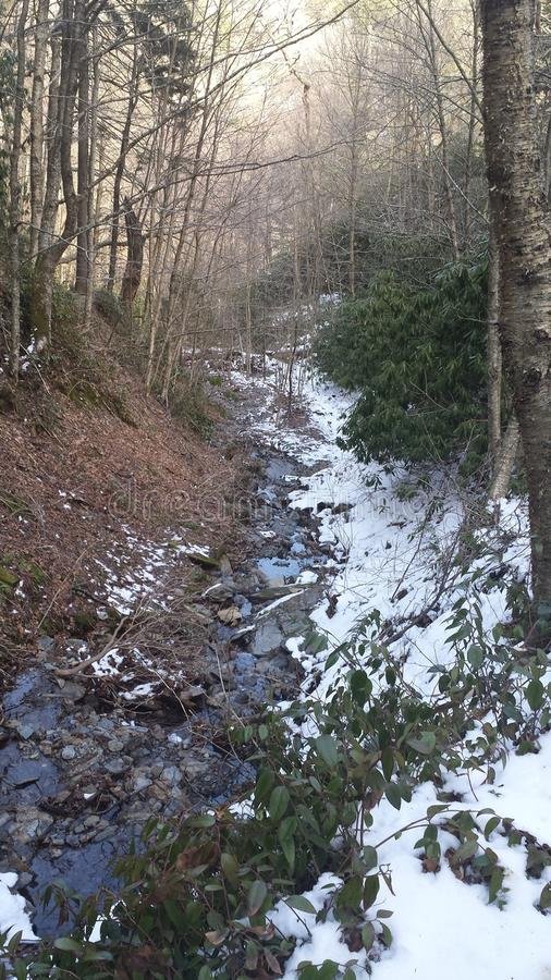 Letto di fiume fumoso delle montagne immagine stock