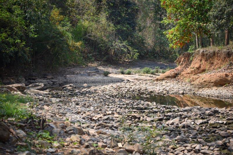 Letto di fiume pietroso asciutto immagini stock libere da diritti