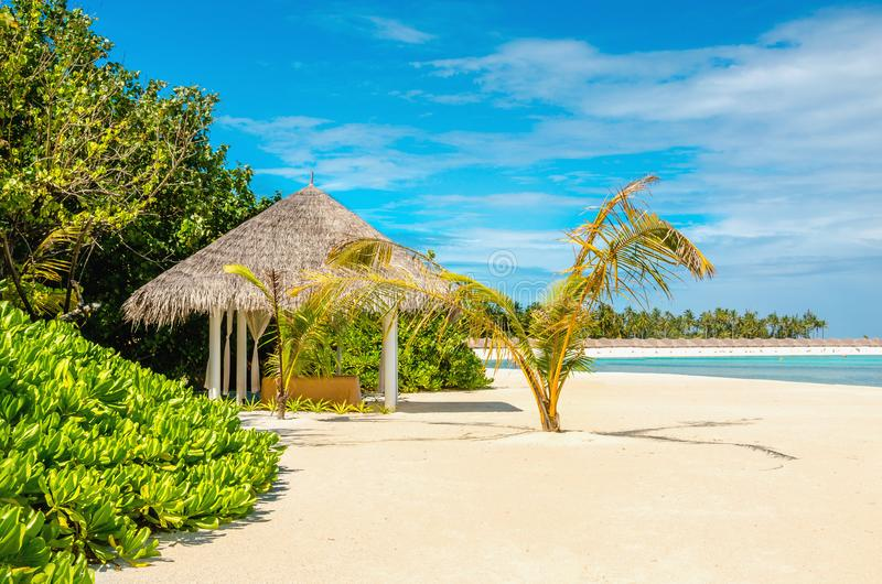 Letto di massaggio sulla spiaggia sabbiosa esotica fotografia stock libera da diritti
