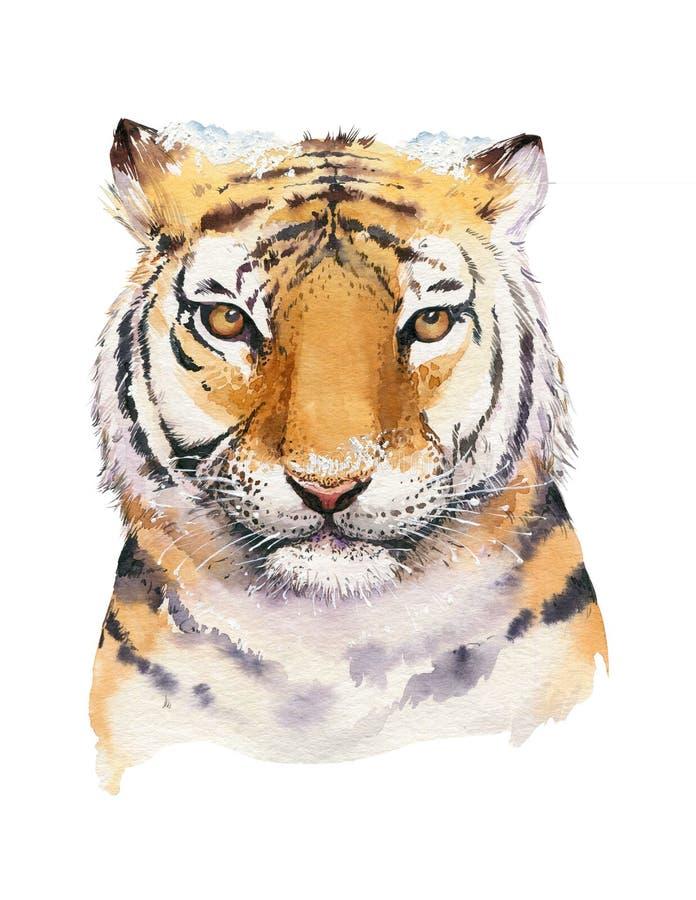 Lettrage d'aquarelle de Joyeux Noël avec l'illustration mignonne d'isolement de tigre sibérien d'amusement d'aquarelle de bande d illustration libre de droits