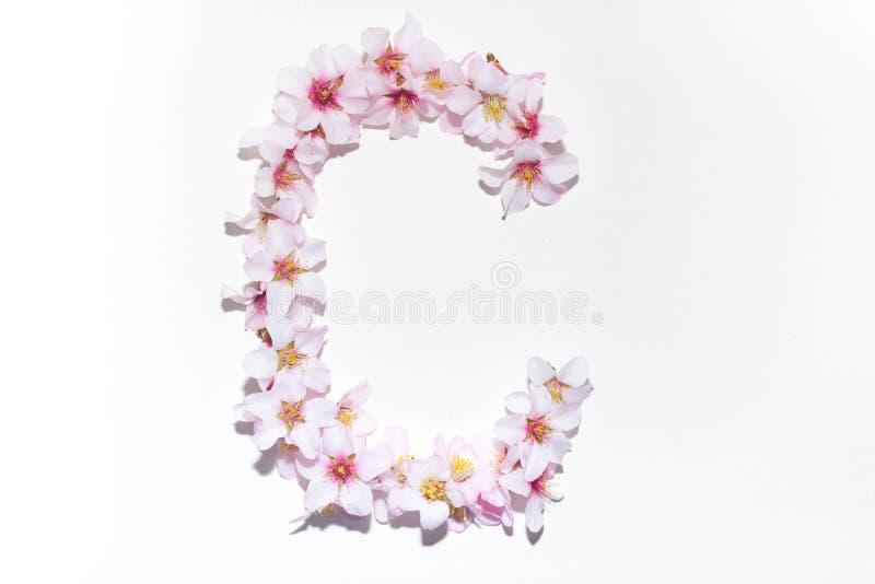 Lettre de l'alphabet anglais des fleurs photo stock