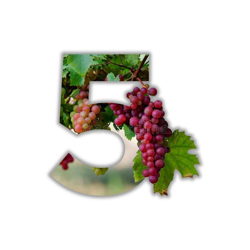Lettre 5 faite de vrais raisins photo libre de droits