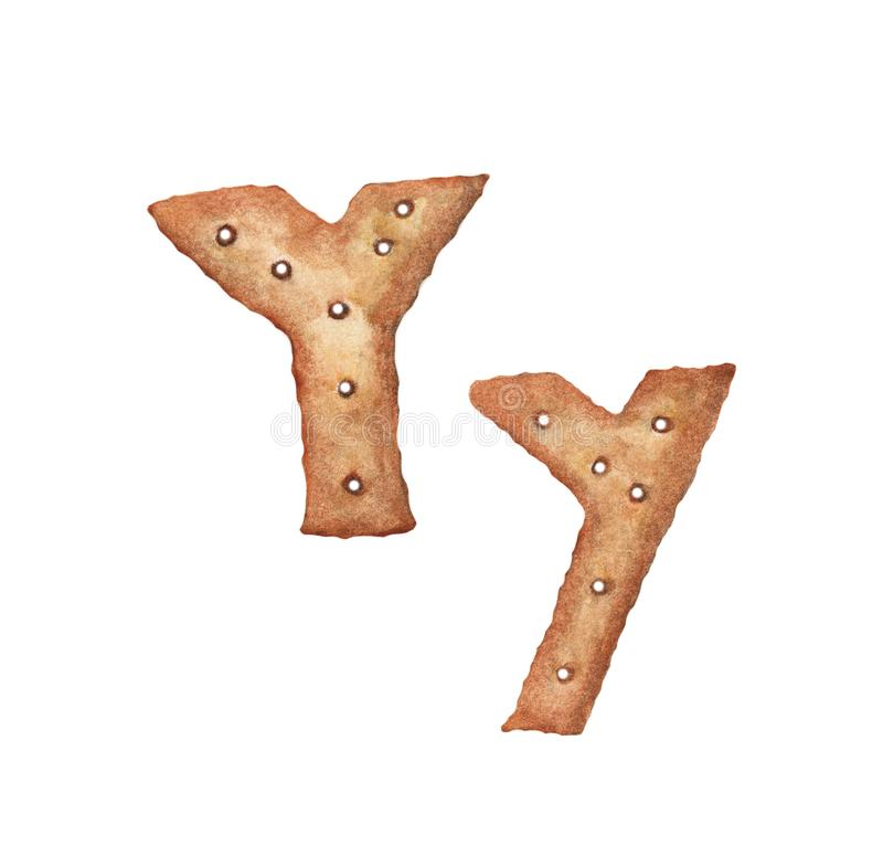 Lettre Y de biscuit sur le fond blanc Police de biscuit Signe ABC de nourriture illustration libre de droits