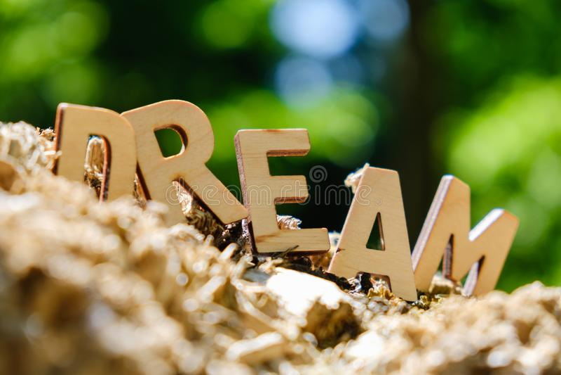 Lettres en bois définissant le rêve de mot sur le concept de fond de nature images stock