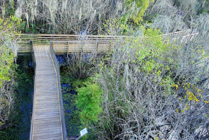 Lettuce湖公园鸟瞰图, 免版税图库摄影