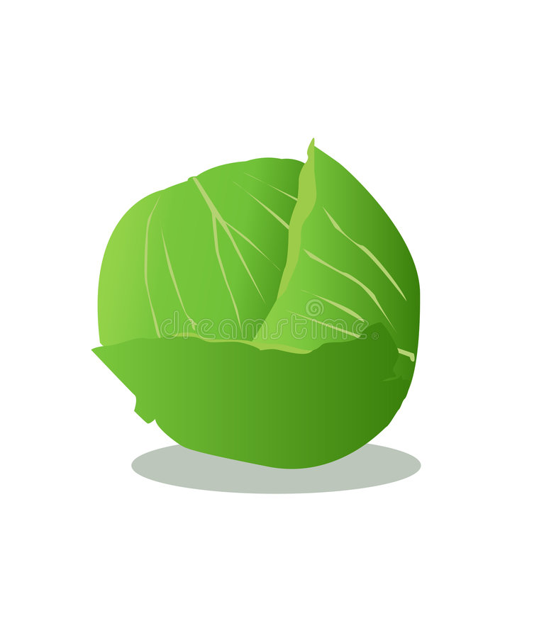 Free Lettuce Royalty Free Stock Photography - 6124037