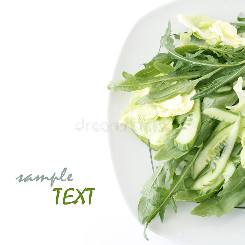 Free Lettuce And Arugula Stock Photo - 19523260