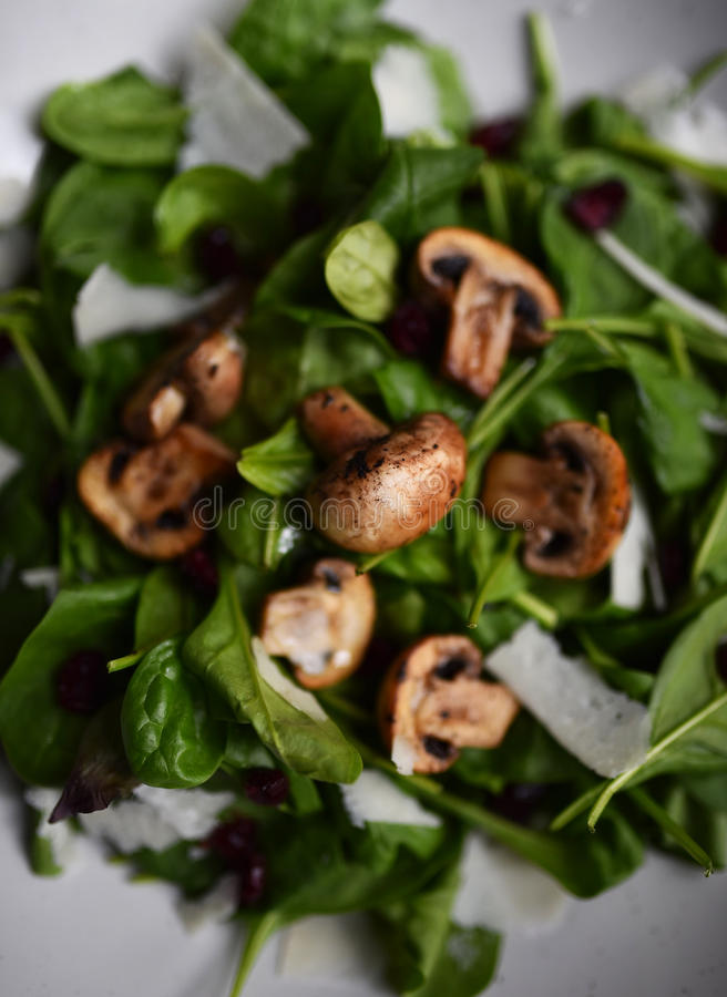 Lettuce salad with mushrooms. stock photo