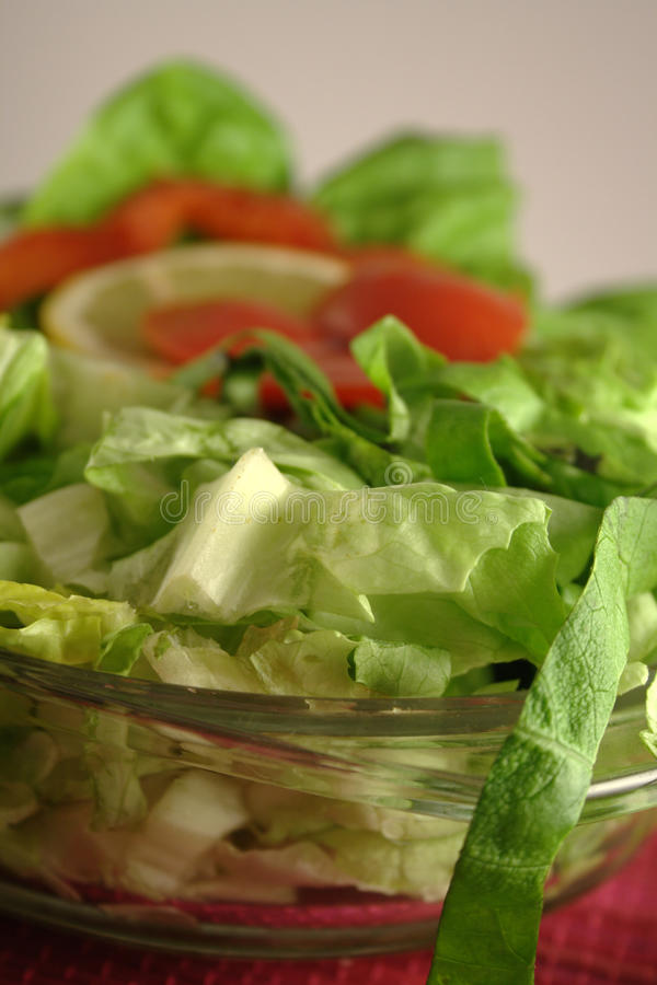Download Lettuces stock photo. Image of healthy, greens, closeup - 13117352