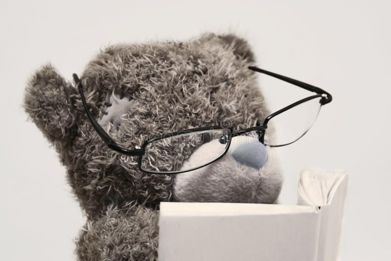 Lettura dell'orso dell'orsacchiotto fotografie stock libere da diritti