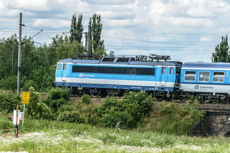 Letztes Fach eines Zugs schoss inmitten vielen Grüns lizenzfreies stockbild