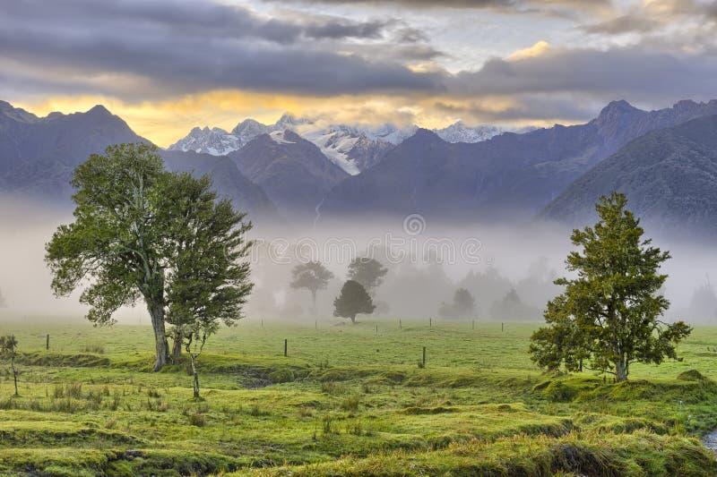 Leuchte des frühen Morgens lizenzfreies stockfoto