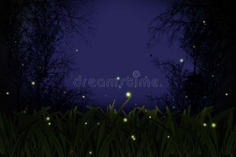Leuchtkäfer. lizenzfreies stockbild