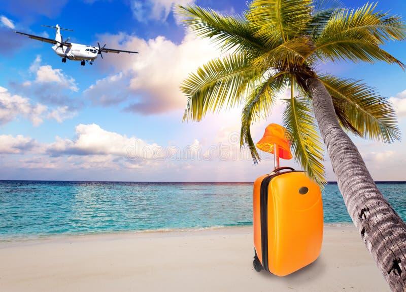 Leuchtorangekoffer und -hut auf dem sandigen Strand durch das Meer unter einer geneigten Palme und der Fläche im Himmel mit Wolke stockbild