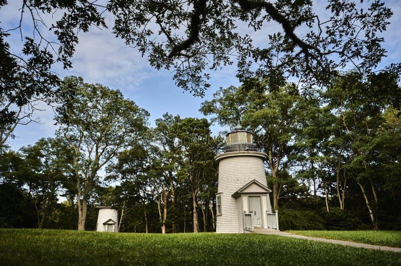 Leuchtturm und Baum stockbild