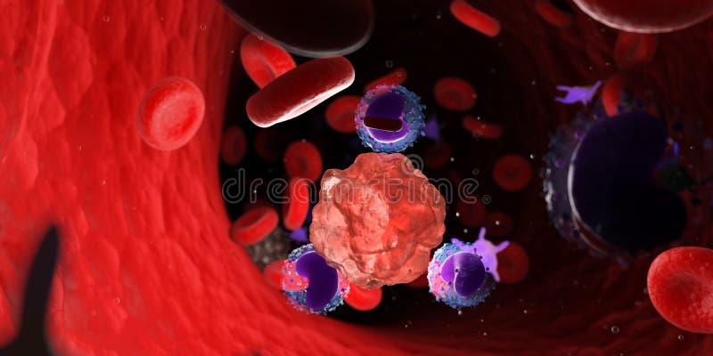 Leucocytes attaquant une cellule cancéreuse illustration libre de droits