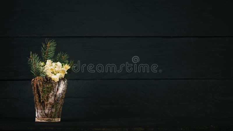 在一个装饰花瓶的Leucojum vernum 是第一春天雪花 国际妇女天题材  库存图片