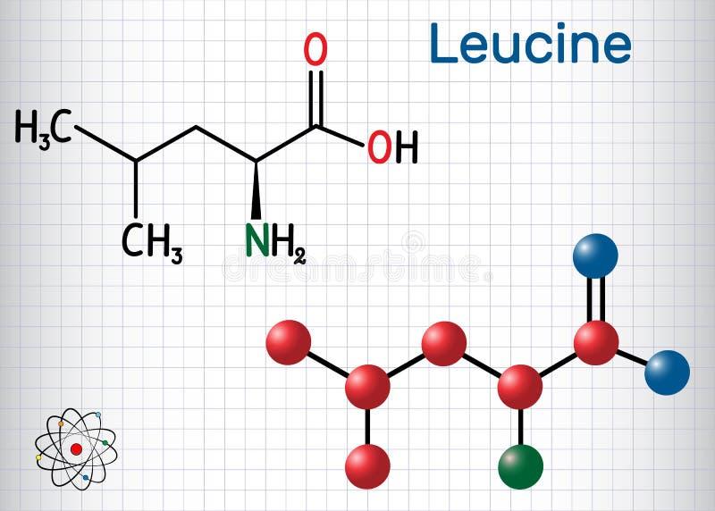 Leucyna L- leucyna, leja, L molekuła Ja jest istotnym amino kwasem Prześcieradło papier w klatce Formalnie chemiczna formuła i ilustracja wektor