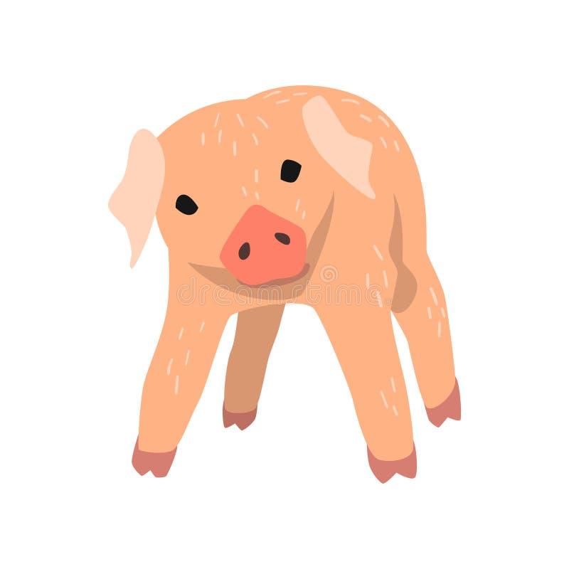 Leuk beeldverhaal weinig varkens vectorillustratie op een witte achtergrond vector illustratie