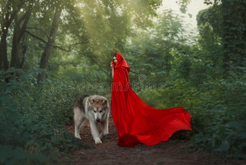 Leuk fantastisch beeld van sprookjekarakter, geheimzinnig donker-haired meisje met lange het vliegen het golven scharlaken rode h stock afbeelding