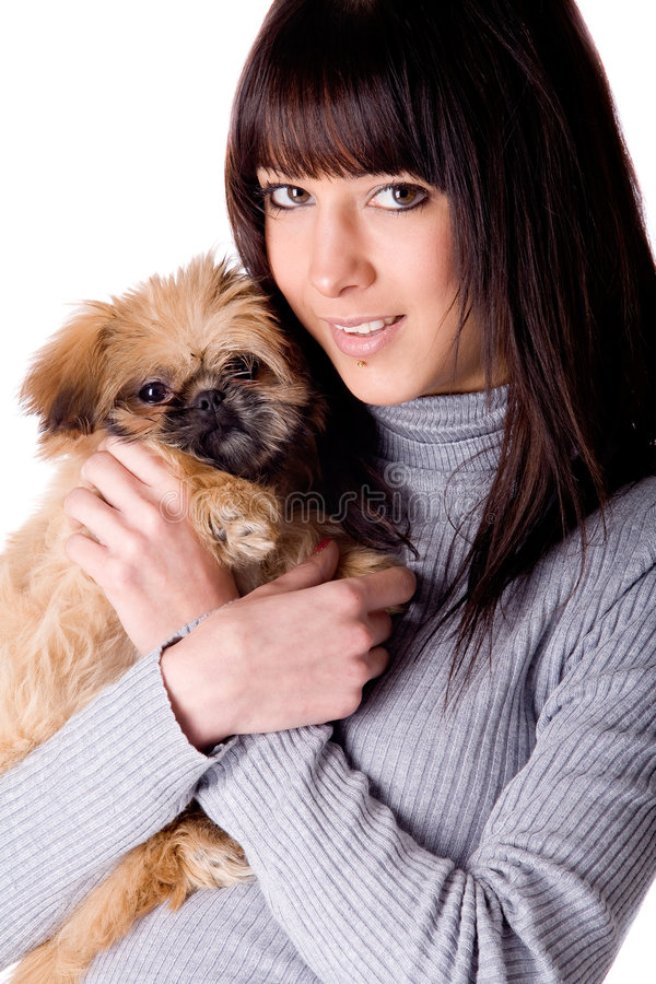 Leuk hondportret stock foto's