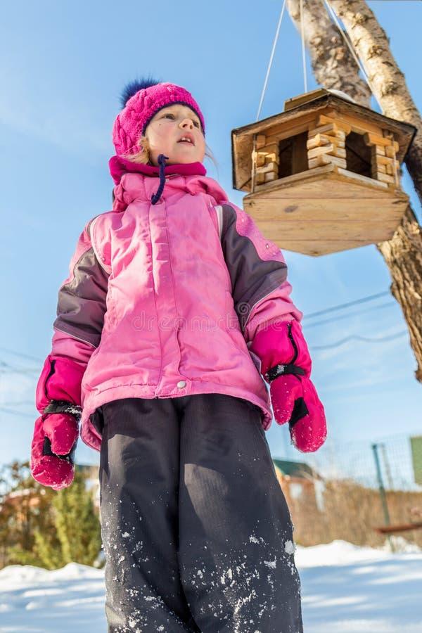 Leuk ittle Kaukasisch meisje in het jasje die van de sportwinter pret het spelen in openlucht met sneeuw hebben Vogelvoeder op bo royalty-vrije stock foto's