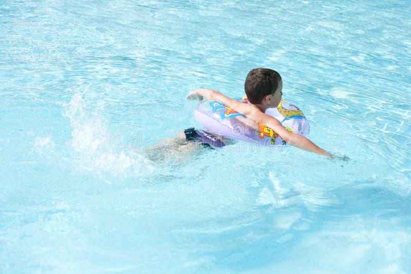 Leuk jong geitje dat in pool zwemt royalty-vrije stock afbeelding