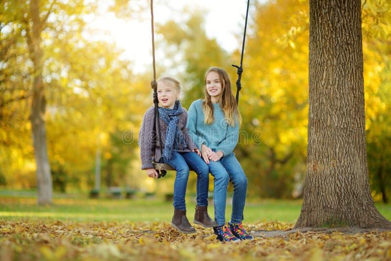 Leuk jong meisje die pret op een schommeling in zonnig de herfstpark hebben Familieweekend in een stad stock afbeelding