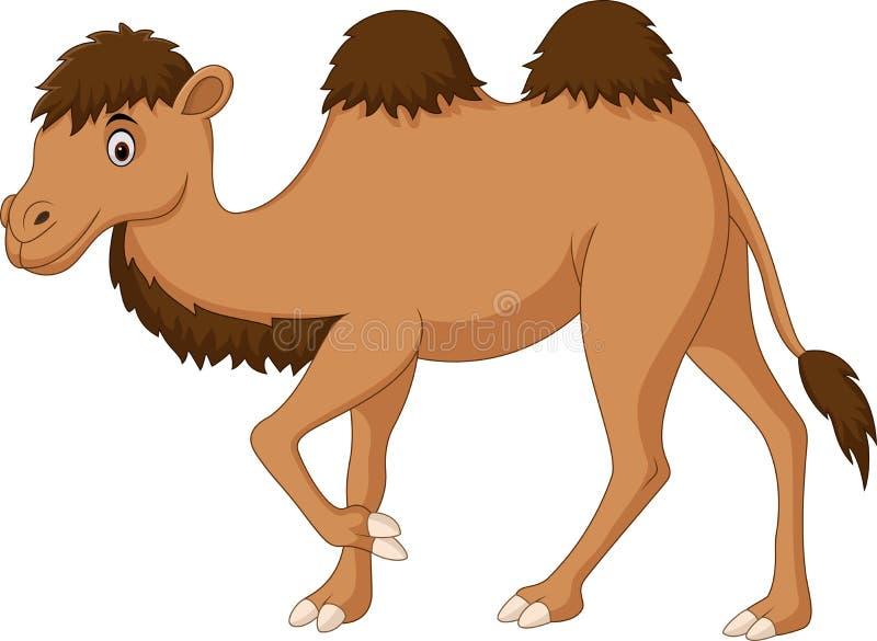 Leuk kameelbeeldverhaal dat op witte achtergrond wordt geïsoleerd royalty-vrije illustratie