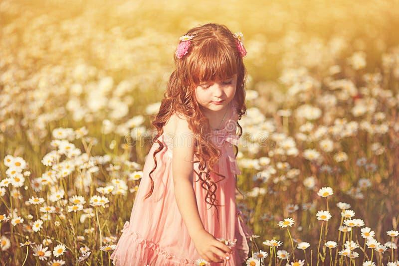 Leuk kindmeisje bij gebied stock foto's