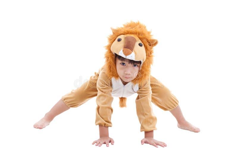 Leuk kleedde weinig jongen zich in leeuwkostuum royalty-vrije stock afbeelding