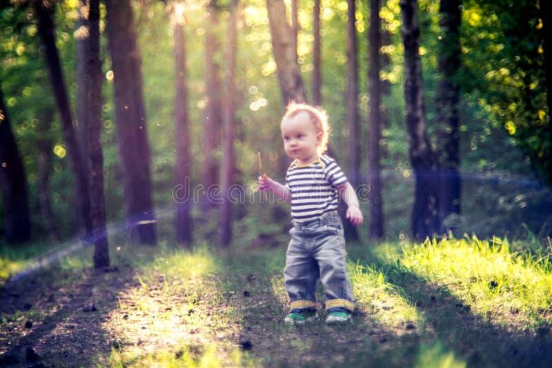 Leuk klein kind in bos bij zonsonderganglicht stock afbeelding