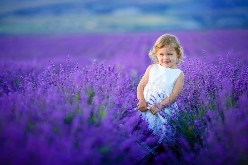 Leuk krullend jong meisje die zich op een lavendelgebied bevinden in witte kleding stock foto's