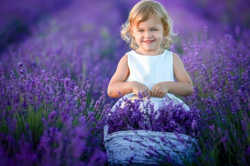 Leuk krullend jong meisje die zich op een lavendelgebied bevinden in witte kleding stock afbeelding