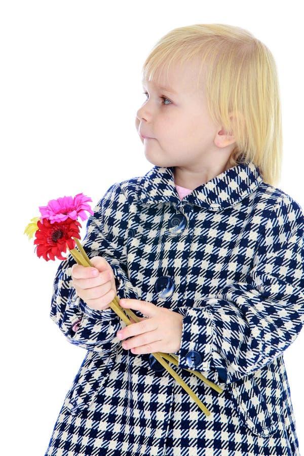 Leuk meisje in de herfstlaag stock fotografie
