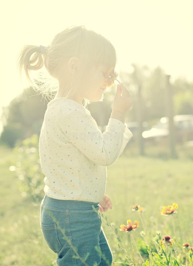 Leuk meisje in de zonneschijn stock afbeeldingen