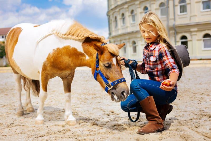 Leuk meisje die bruine leer berijdende laarzen dragen die paard voeden royalty-vrije stock foto's