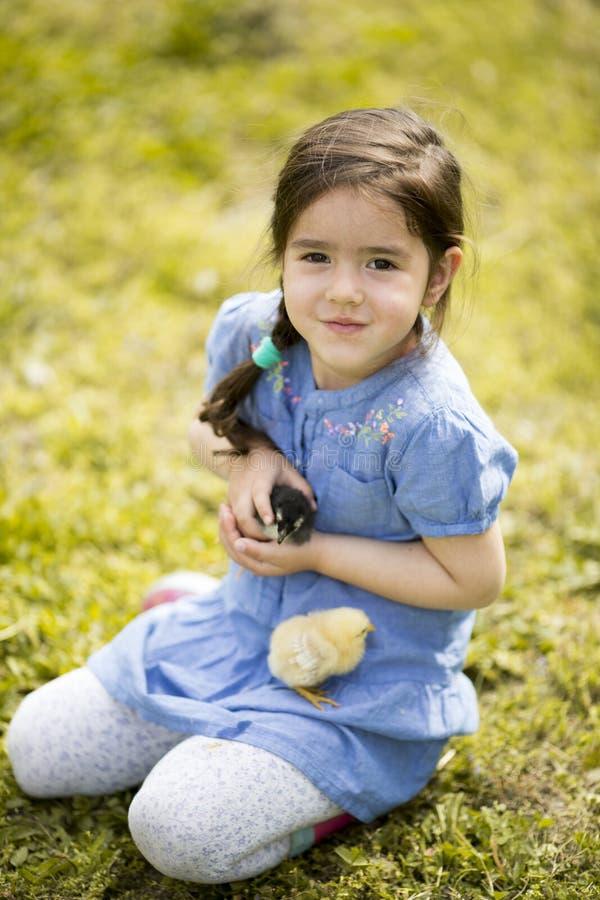 Leuk meisje met de kippen stock afbeeldingen