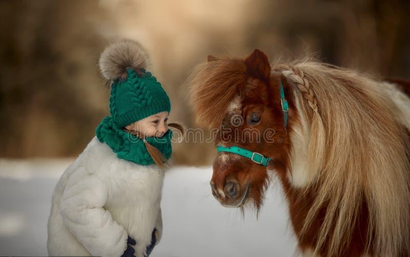 Leuk Meisje met pinto poney stock afbeeldingen
