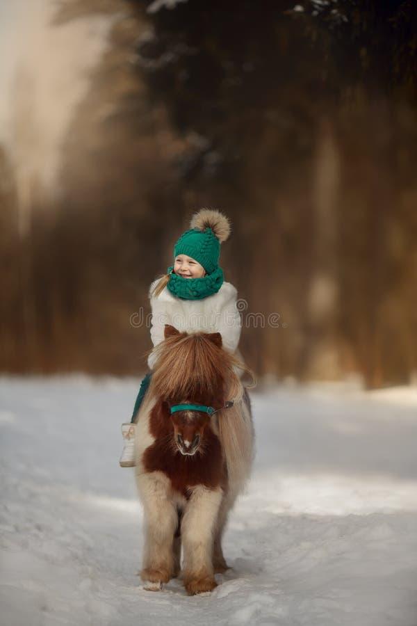 Leuk Meisje met pinto poney royalty-vrije stock foto's