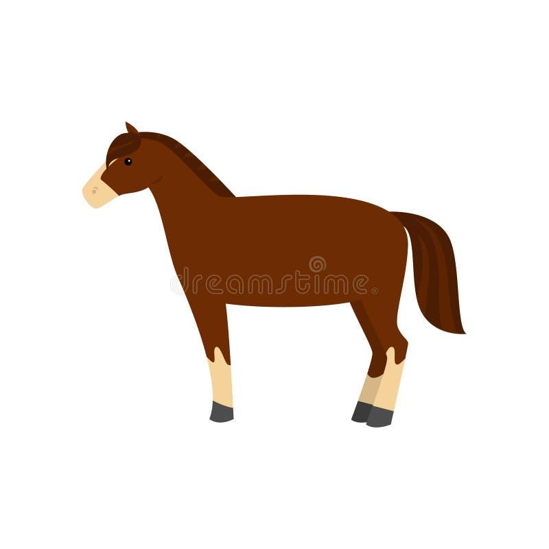 Leuk mooi beeldverhaalpaard Bevallig paard van een ongebruikelijke kleuring stock illustratie