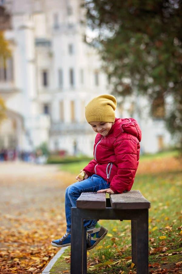 Leuk mooi kind, jongen, die op een bank voor beauti zitten royalty-vrije stock foto's