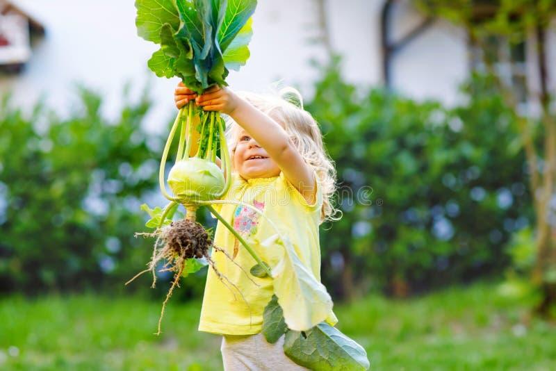 Leuk mooi peutermeisje met koolraap in moestuin Gelukkig schitterend babykind die pret met eerste oogst hebben van stock foto's